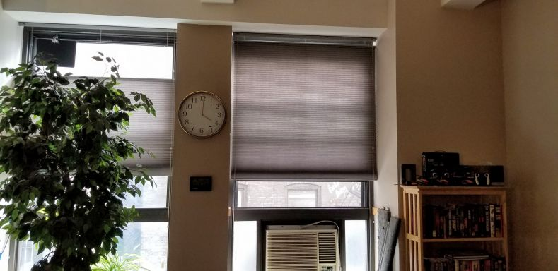 The freshly repaired blinds in my windows.