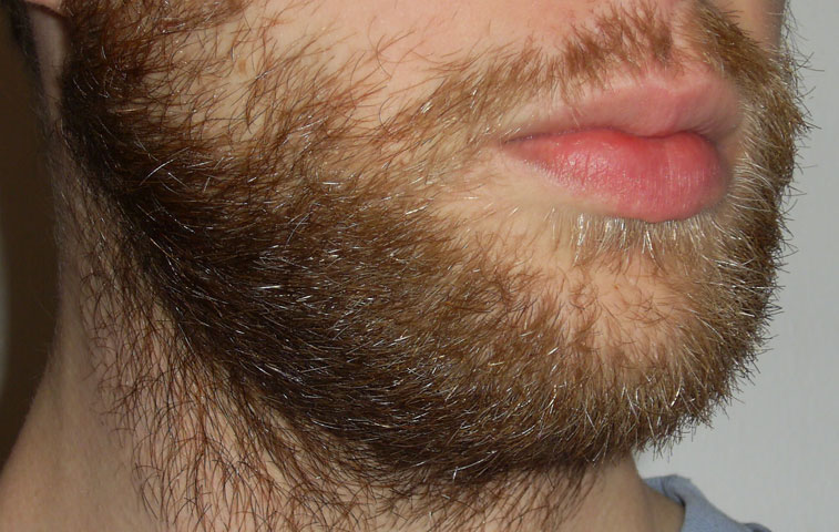 This is what my beard looks like, after it grows for exactly one month.